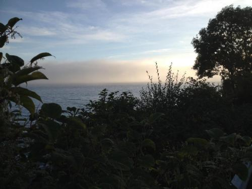 Sun Shining as the fog rolls in from the sea